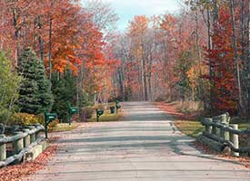 Discovery Channel Names The Tunnel of Trees A Can't-Miss Fall Destination in Northern Michigan Harbour Ridge style=
