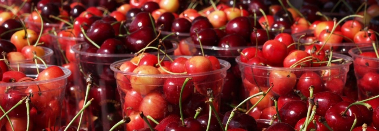 Picture of Cherries for the Cherry Festival Bay Harbor